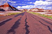 Diverging Road In Painted Desert In Arizona