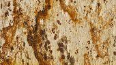 pic of gneiss  - 1x4ft horizontal Sample of Tropical Varnish Granite - JPG