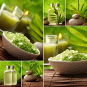 SPA stilleven collage