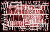 Mixed Martial Arts MMA as a Fighting Style