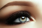 Beautiful Macro Shot Of Female Eye With Extreme Long Eyelashes poster