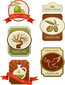image of olive trees  - Olives labels collection isolated on white background - JPG