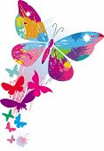 image of paint brush  - Butterflies and line brushes - JPG
