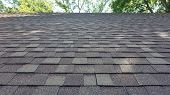 Asphalt Shingles House Roofing Construction, Repair. Problem Areas For House Asphalt Shingles Roofin poster