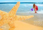Bonita estrela do mar na praia com menina coletando conchas