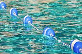 buoys acting as boundary in pretty pool water