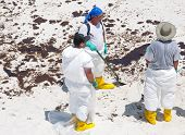 PENSACOLA BEACH - JUNE 23: BP oil workers attempt to clean oil covered sand on June 23, 2010 in Pens