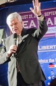 TAMPA - SEPTEMBER 12: Republican candidate Newt Gingrich addresses supporters after the CNN/Tea Part
