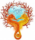stock photo of seahorses  - Seahorse love frame - JPG