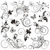 Conjunto de vetor flores, borboletas e padrões