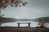 Empty Bench In The Park Near The Lake. Foggy Morning. Autumn Theme poster