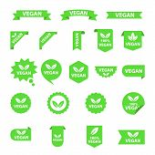 Vegan Logos Collection Set, Organic Bio Logos Or Signs. Raw, Healthy Food Badges, Tags Set For Cafe, poster