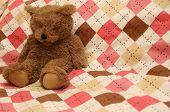 A Fuzzy Little Teddy Bear Sitting On An Argyle Blanket. poster