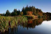 Fall Season Start Idyllic Lake Reflections Of Fall Foliage. Colorful Autumn Foliage Casts Its Reflec poster