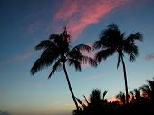 Sunset/Moon Rise