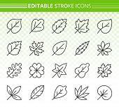 Organic Leaf Thin Line Icons Set. Outline Web Sign Kit Of Season Foliage. Autumn Linear Icon Decorat poster