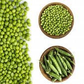 Set Of Green Peas. Green Peas Isolated On A White Background. Vegetables With Copy Space For Text. F poster