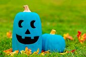 Two Teal Pumpkins Outside. Symbol Of Alternative Non-food Treats For Children With Food Allergies. T poster