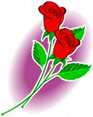 A vector illustration of a couple of roses