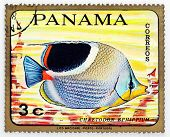 PANAMA - CIRCA 1978: A stamp printed in Panama shows tropical reef fish Chaetodon Ephippium, circa 1