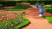 Scenic garden in spring, Peterhof, Residence of Russian tsars