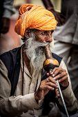 Foto rua de serpentes. Índia.