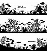 pic of coral reefs  - Three editable vector sea coral silhouette foregrounds - JPG