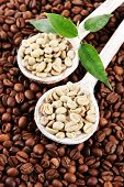 Green and brown coffee beans with leaves