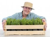 Female senior gardener wearing straw hat posing over aspic seedlings in wooden crate shot on white
