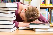 Student - Young woman in library with books learning, she is asleep, tired and overworked