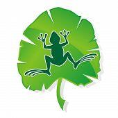 Hoja de rana verde