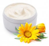 Jar of cream and calendula flower on a white background.