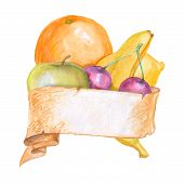 Fruit Composition Water Color Banner