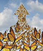 pic of monarch  - Together for success business concept with monarch butterflies flying in a large union of organized group partnership forming an arow going up to the sky as a symbol of employee solidarity and opportunity - JPG