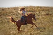 foto of breed horse  - Beautiful girl riding a horse  in countryside - JPG