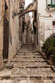 Italian Pathway