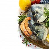 pescados y mariscos frescos y verduras sobre hielo - comida y bebida frontera