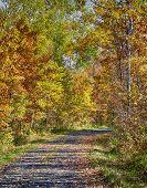 Wisconsin autumn landscape