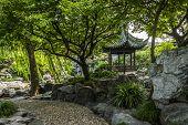 picture of yuan  - Chinese Yu Yuan Gardens in Shanghai - JPG