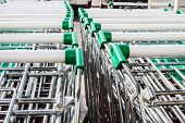 Supermarket Shopping Carts In A Row