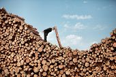 Hardworking Business Man on top of large pile of logs solving problem