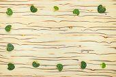 Abstract Leaves Ceropegia Woodii On Wood Texture (ice Tree)
