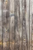 picture of gey  - The wall of wooden planks painted in white or gey - JPG