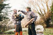 Gardeners Pruning Trees