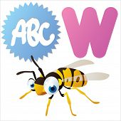 W is for Wasp