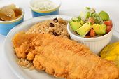 Colombian cuisine. Breaded fish.
