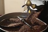 stock photo of coffee crop  - Freshly roasted coffee beans spilled out coffee roasting machines - JPG