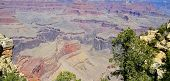 Arizona's Grand Canyon