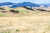 Scenic Rural Montana