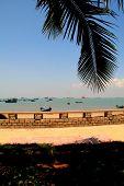 Scenic Seaview